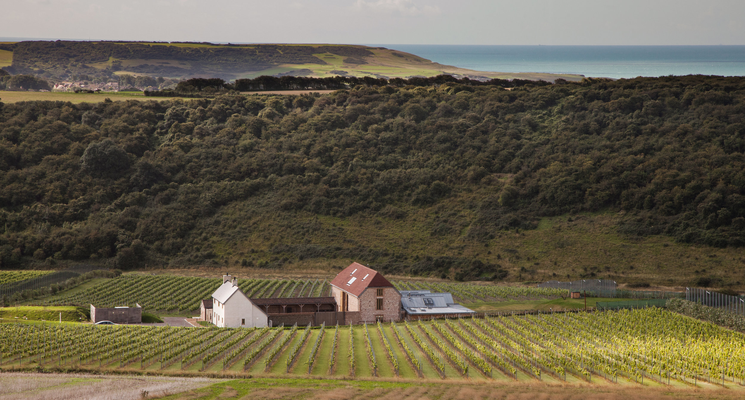Rathfinny Estate: Vineyards, Flint Barns and English Channel. Photo: Rathfinny Estate