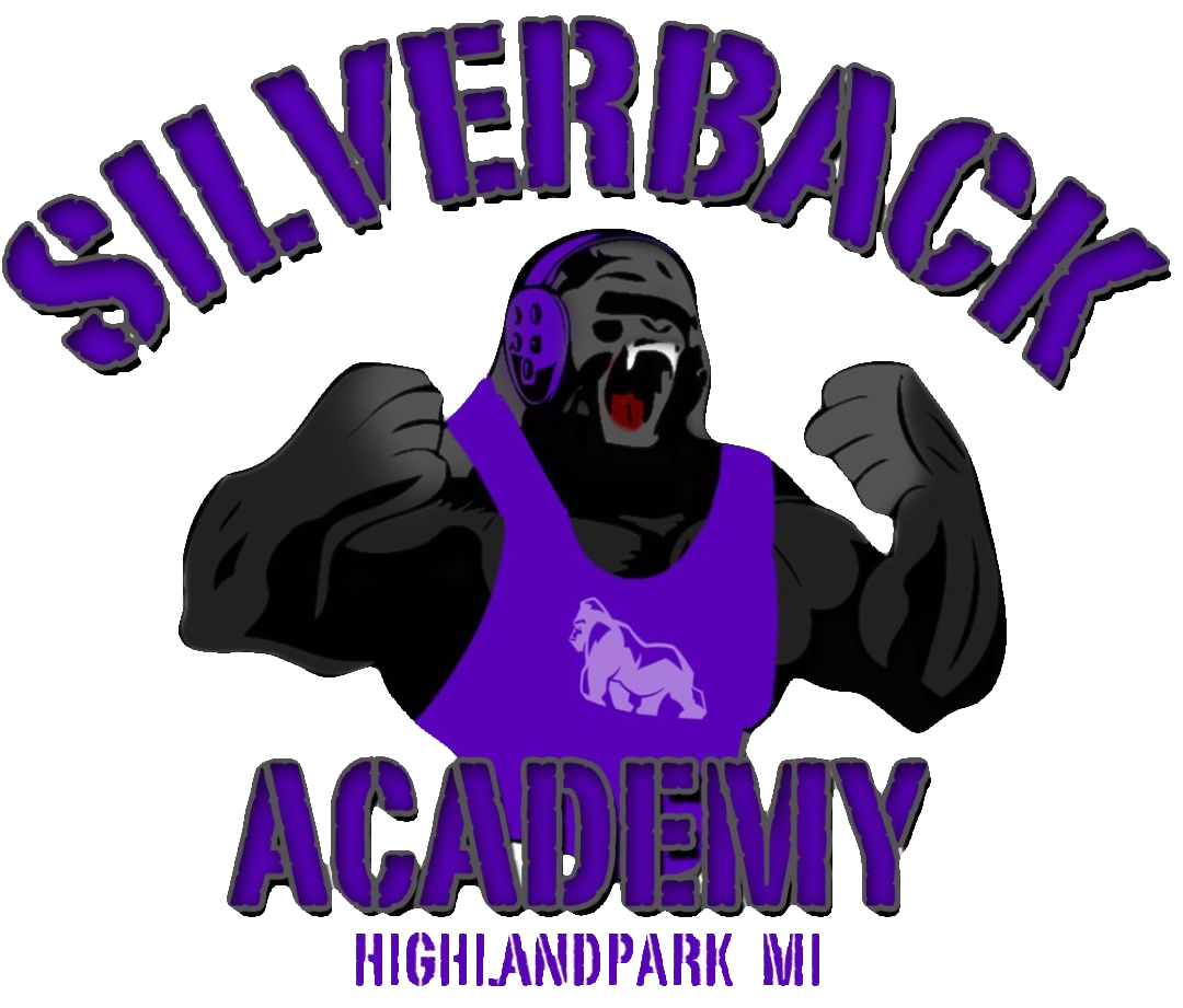 The Silverback Academy.png