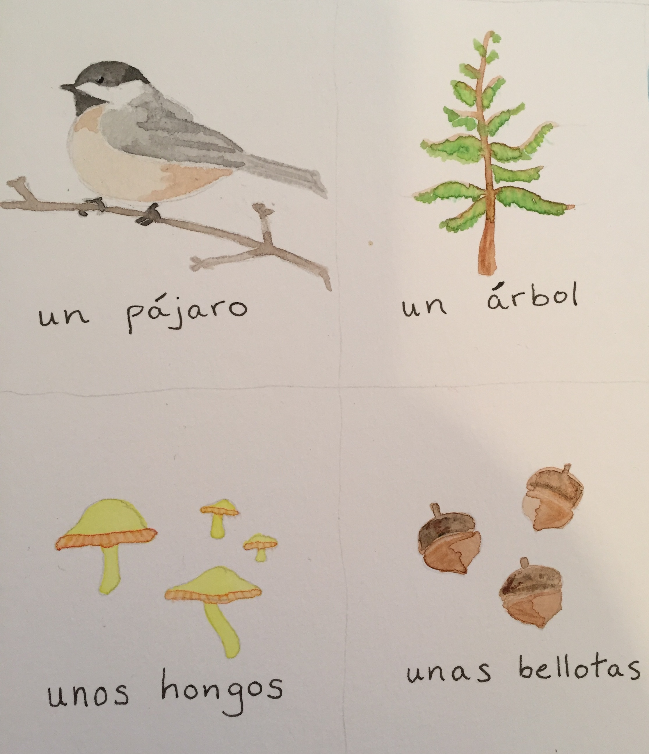 Some illustrated cards with text in Spanish.