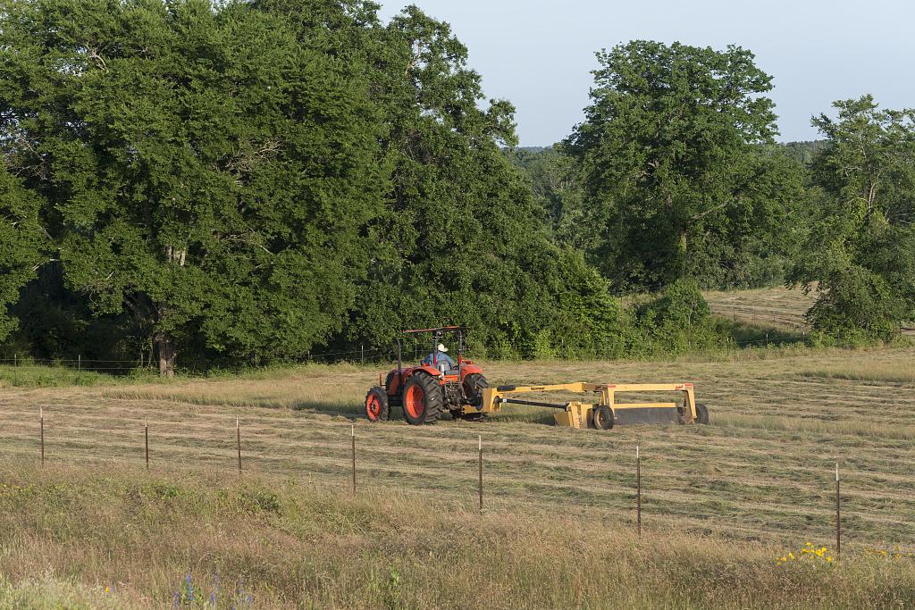 rural2.jpg