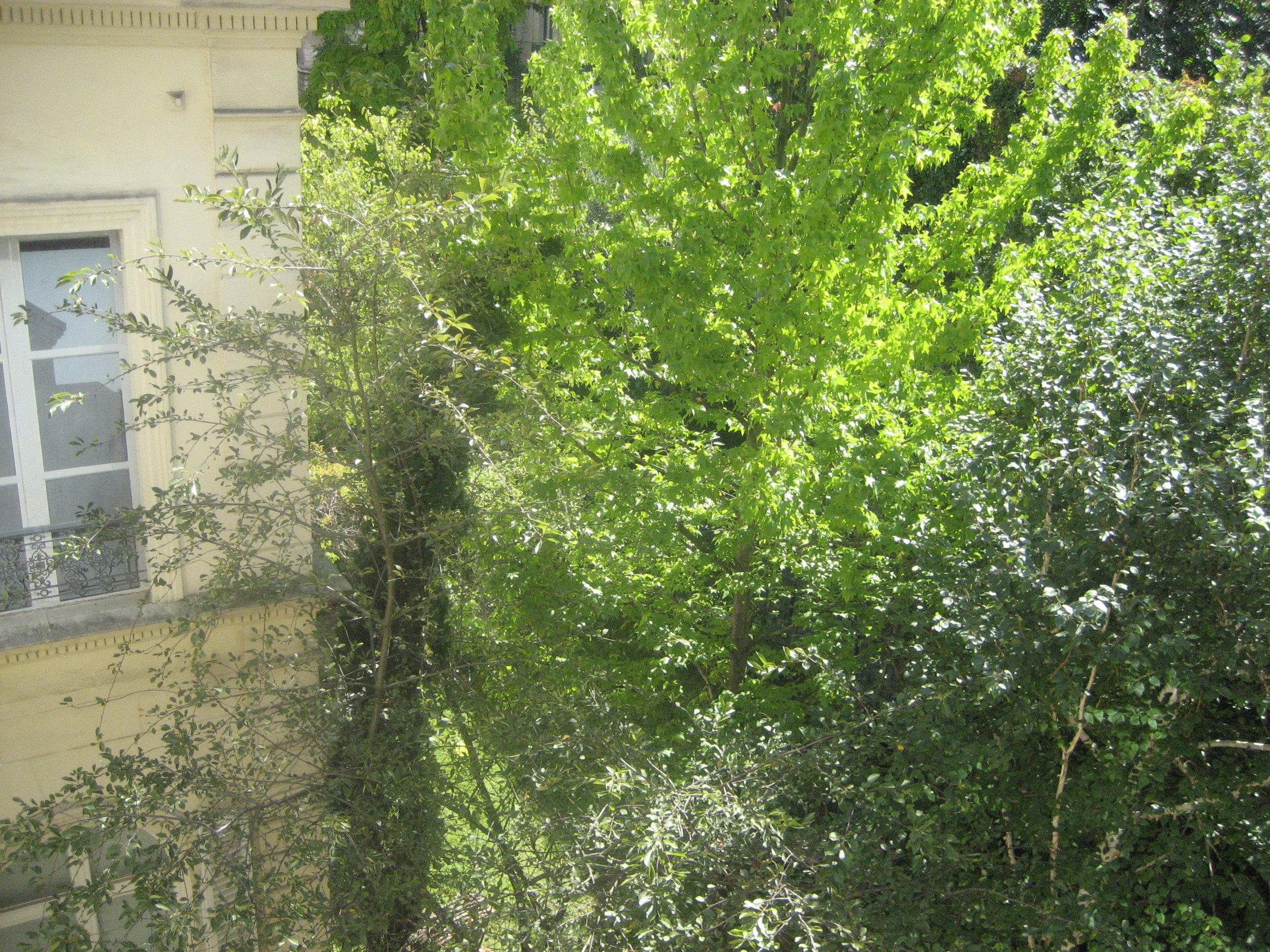 52Clichy-Apartment-garden.JPG