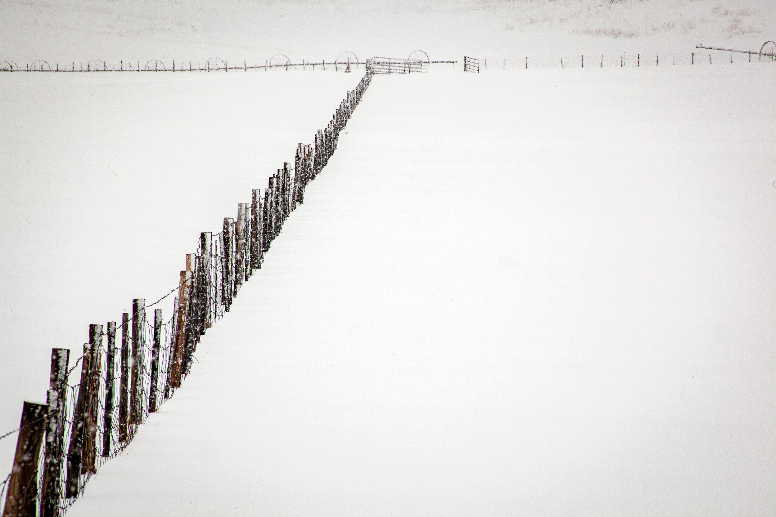 Fences I,  Winter Light.