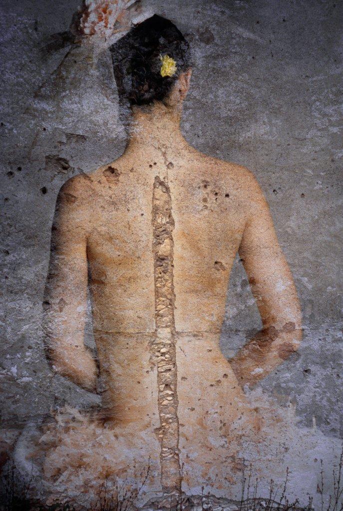 katmoser-spine.jpg
