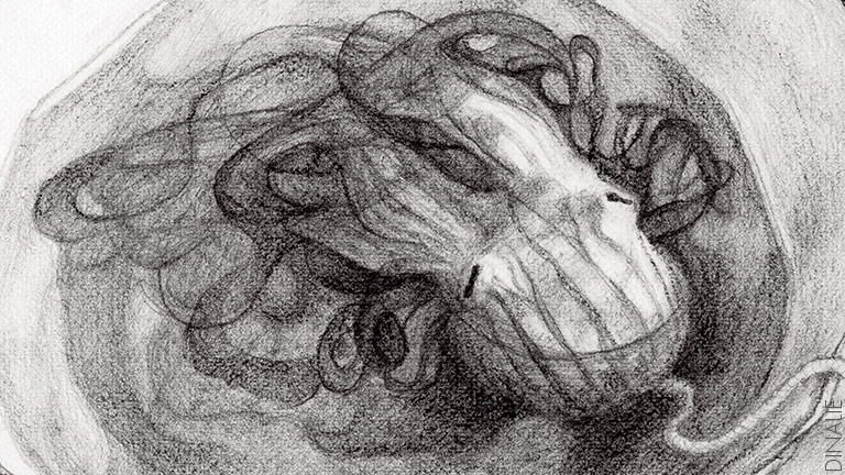 Dinalie-Octopus-Drawings-02.jpg