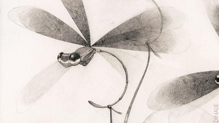 Dinalie-Octopus-Drawings-08.jpg