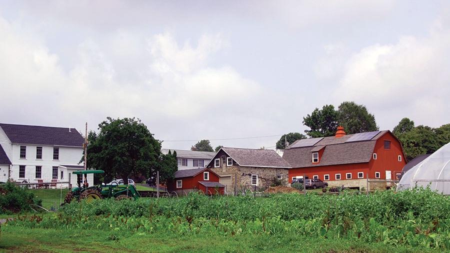 Farm-Summer-2015.jpg