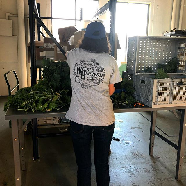 Straight from the source 🙌🏻🌱 Our #WeeklyHarvest team is working hard to provide our community with top-notch greens! . . . . #monday #mondaymotivation #teamwork #greens #hardworkpaysoff #farmteam #farmer #farming #ctgrown #connecticut #harvest #localfood #supportlocal #eatlocal