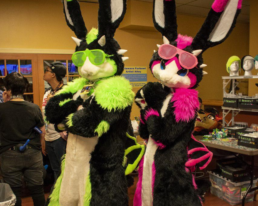 Events - TFS and the local community hosts multiple events each year such as New Years Furry Ball and Delaware Furbowl! Click the button below to check for what events are upcoming.