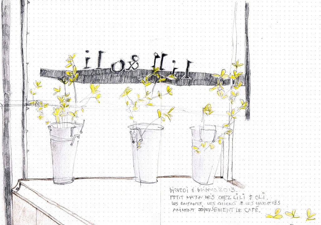 3 pots de fleurs.jpg
