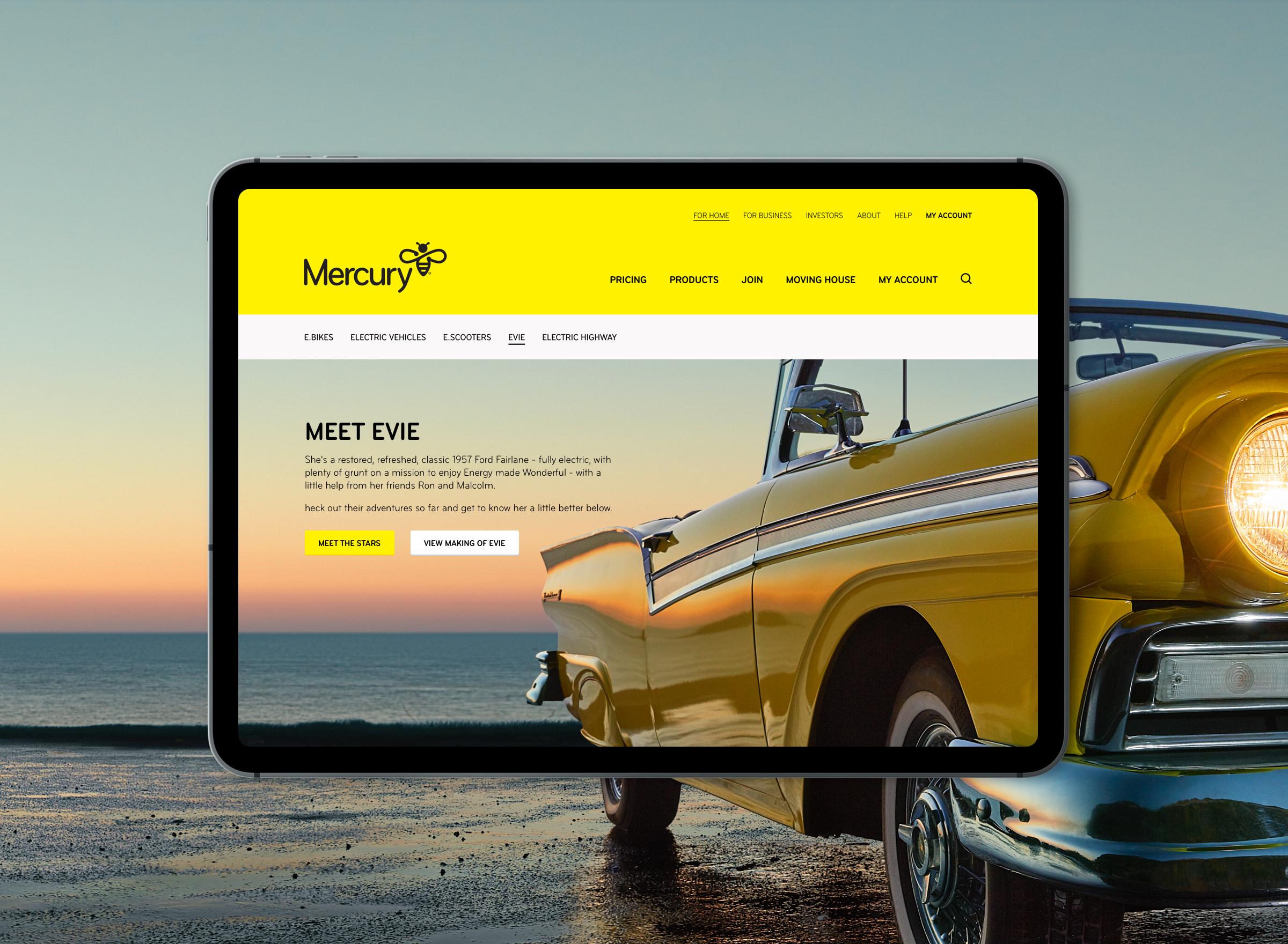 Mercury Website - Meet Evie@2x.jpg