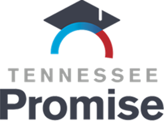 tn promise 1.png