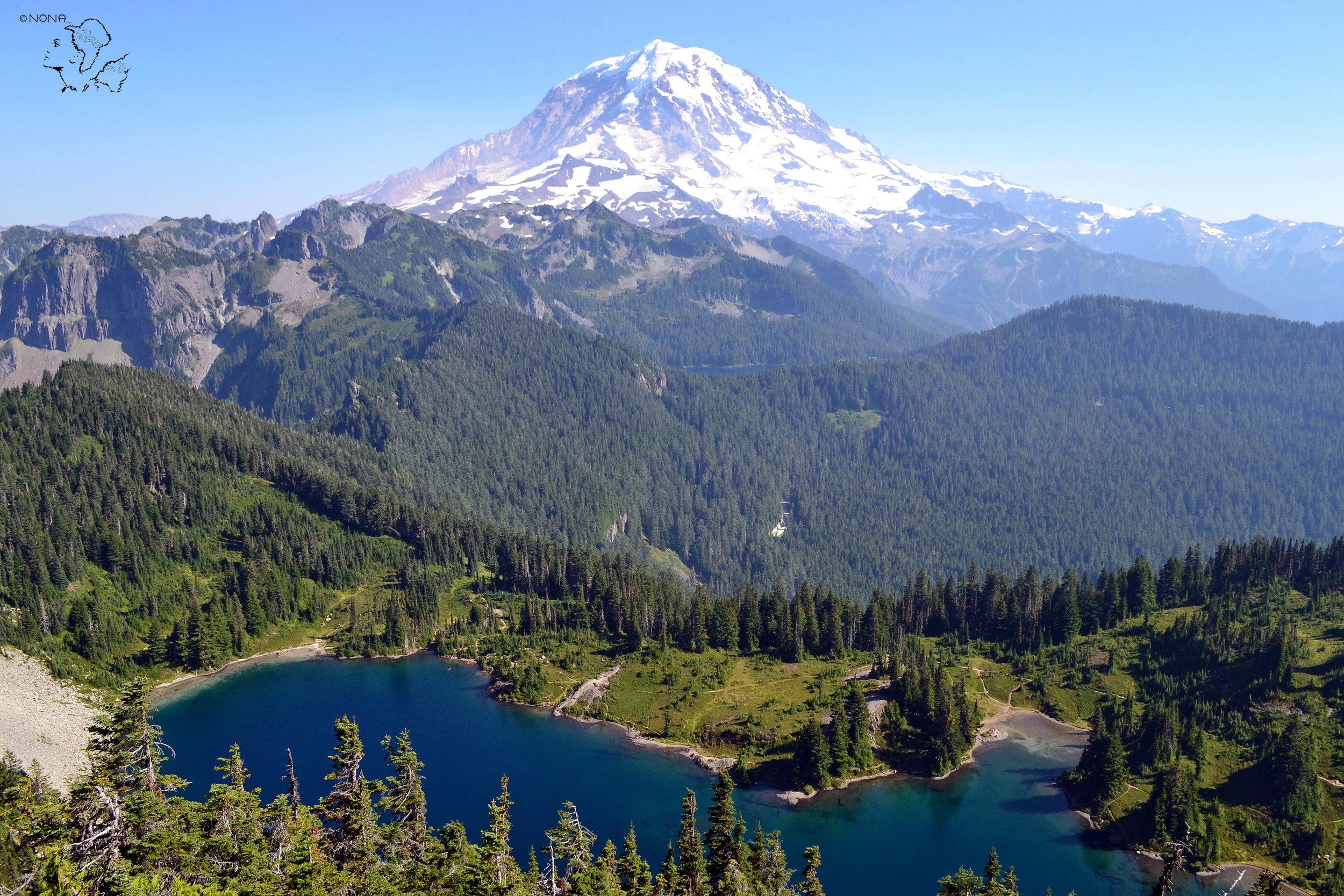 """Tolmie Peak Lookout"""