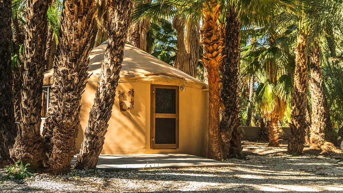 Their accommodation fit perfectly amongst the palm grove