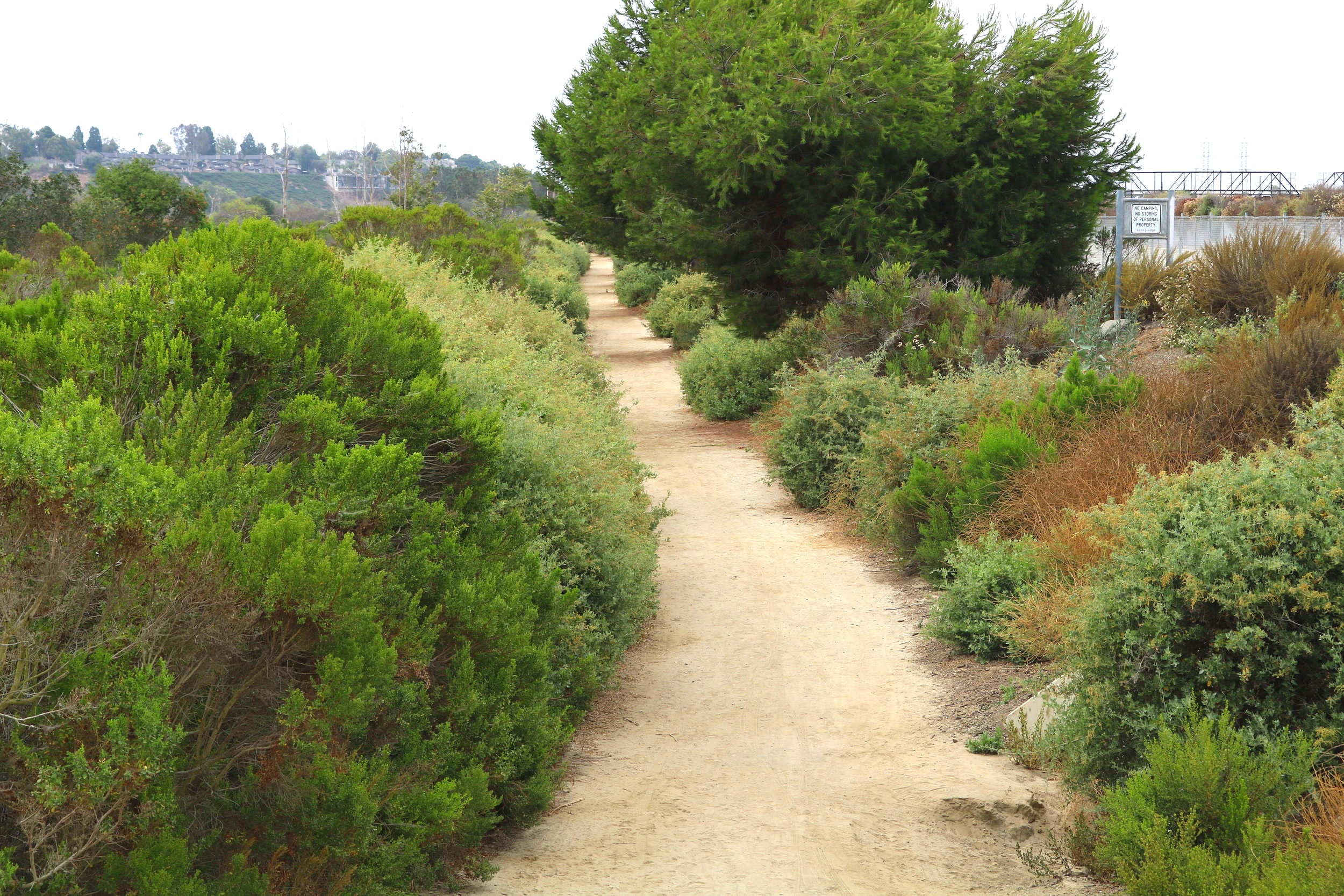 Our Mission Is To Unite Communities Around the Creation of a Greater Orange Coast River Park -