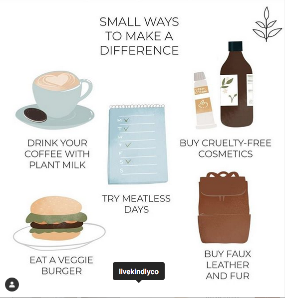 Easy tips to consider each day - graphic by LIVEKINDLY, via mindbodygreen.