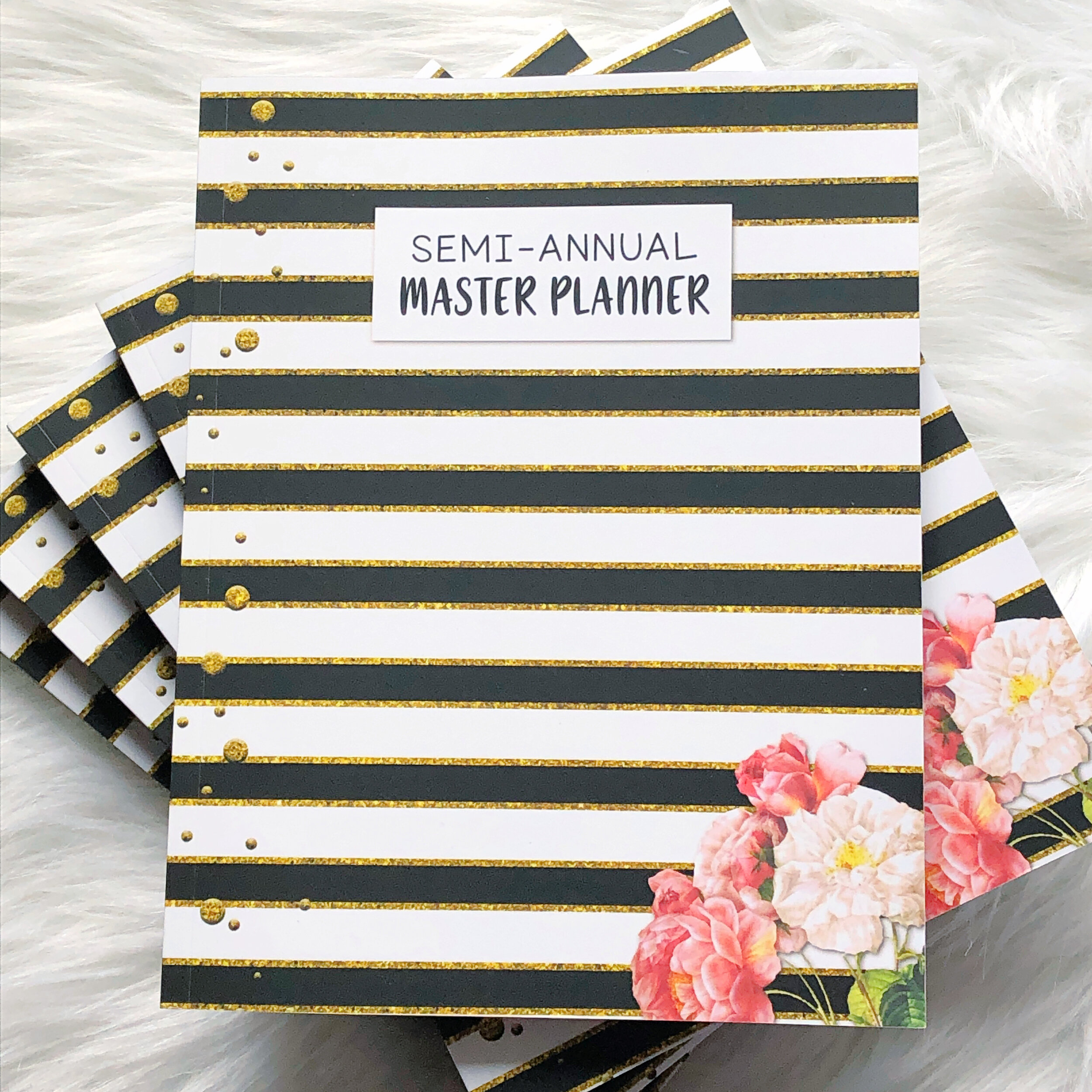 Semi-Annual Planner - Your go-to Personal Planning System that will help you manage your time and complete your tasks.