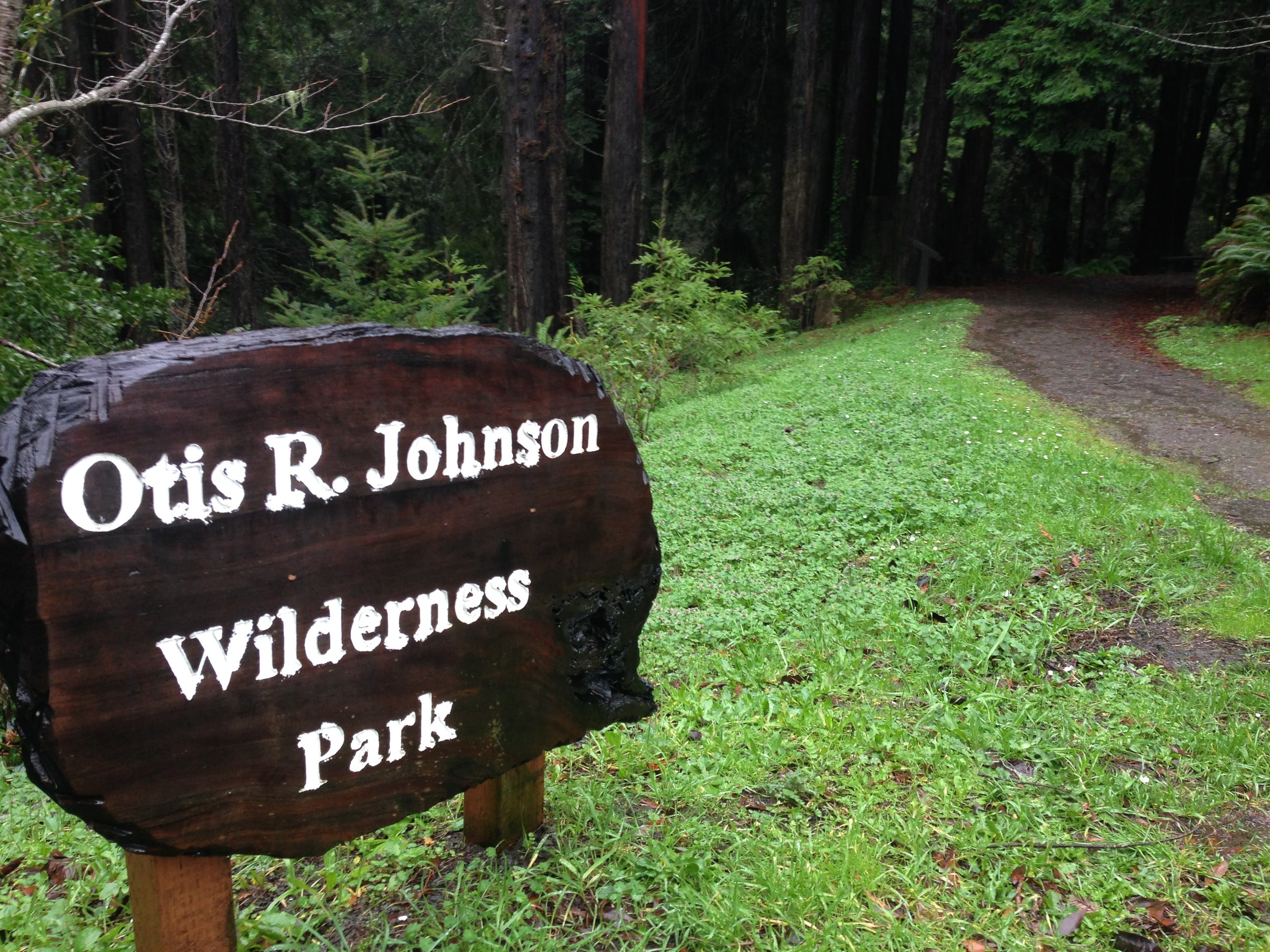 Otis Johnson Park has a Redwood Forest that is walking distance from downtown Fort Bragg.