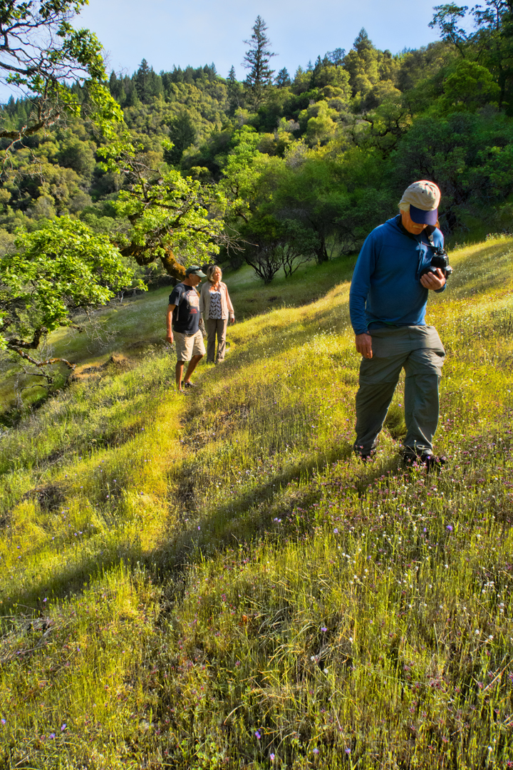 Hiking among the meadows of Lake Mendocino. Photo by June Ruckman