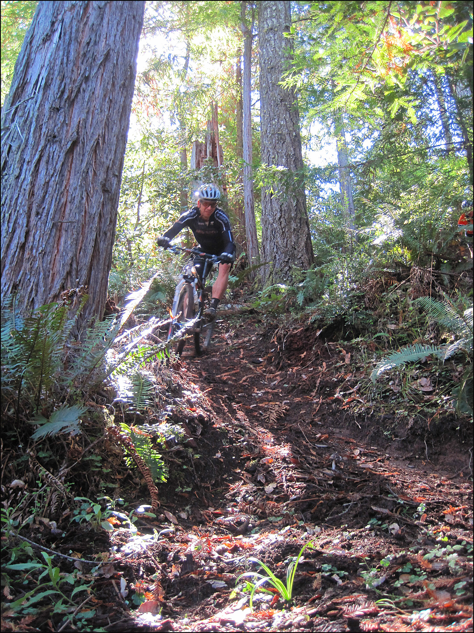 Singletrack mountain biking in Jackson State Forest. Photo by Roo Harris