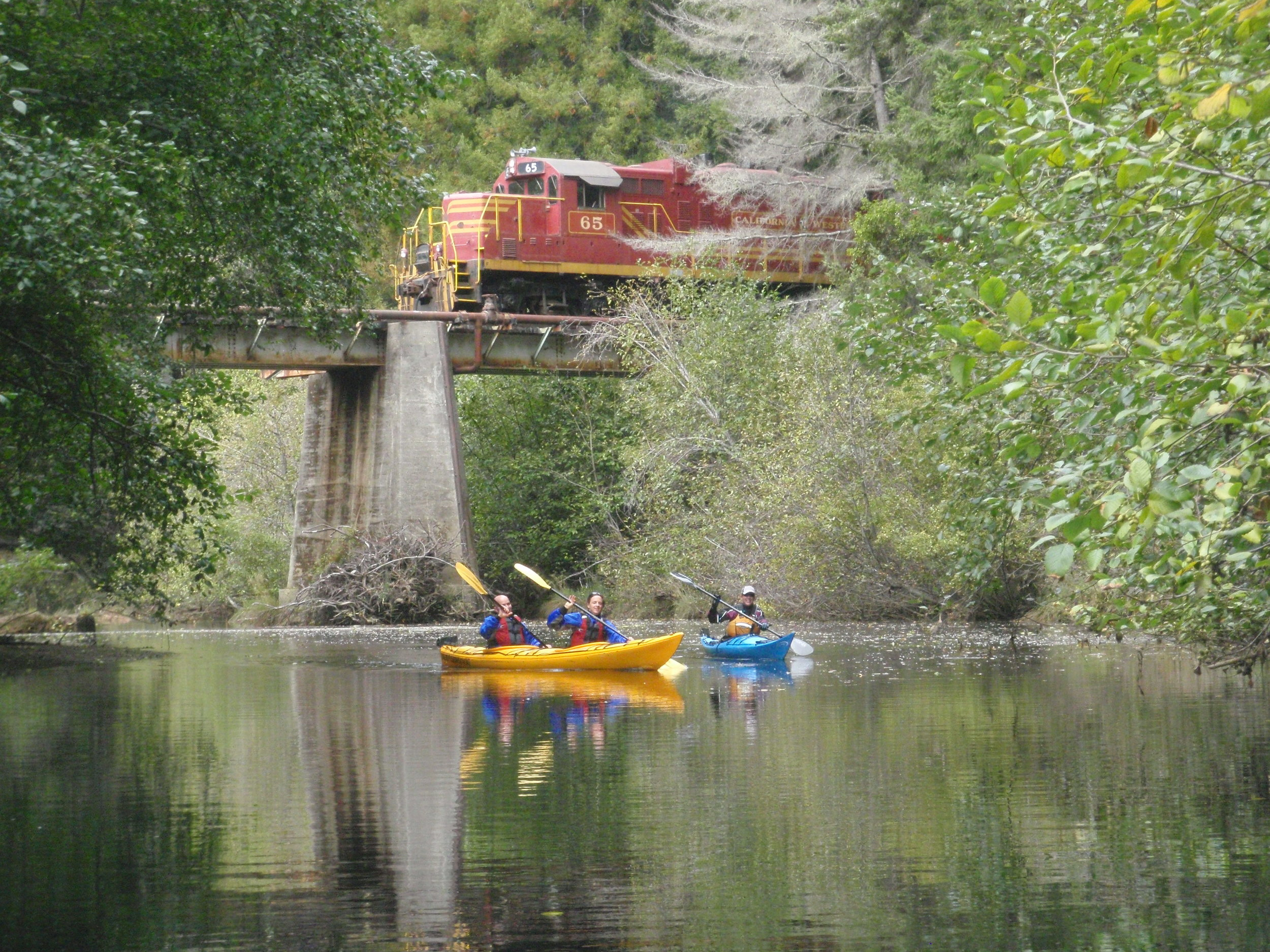 Noyo River Kayaking as the Skunk Train goes by. Photo Liquid Fusion Kayaking