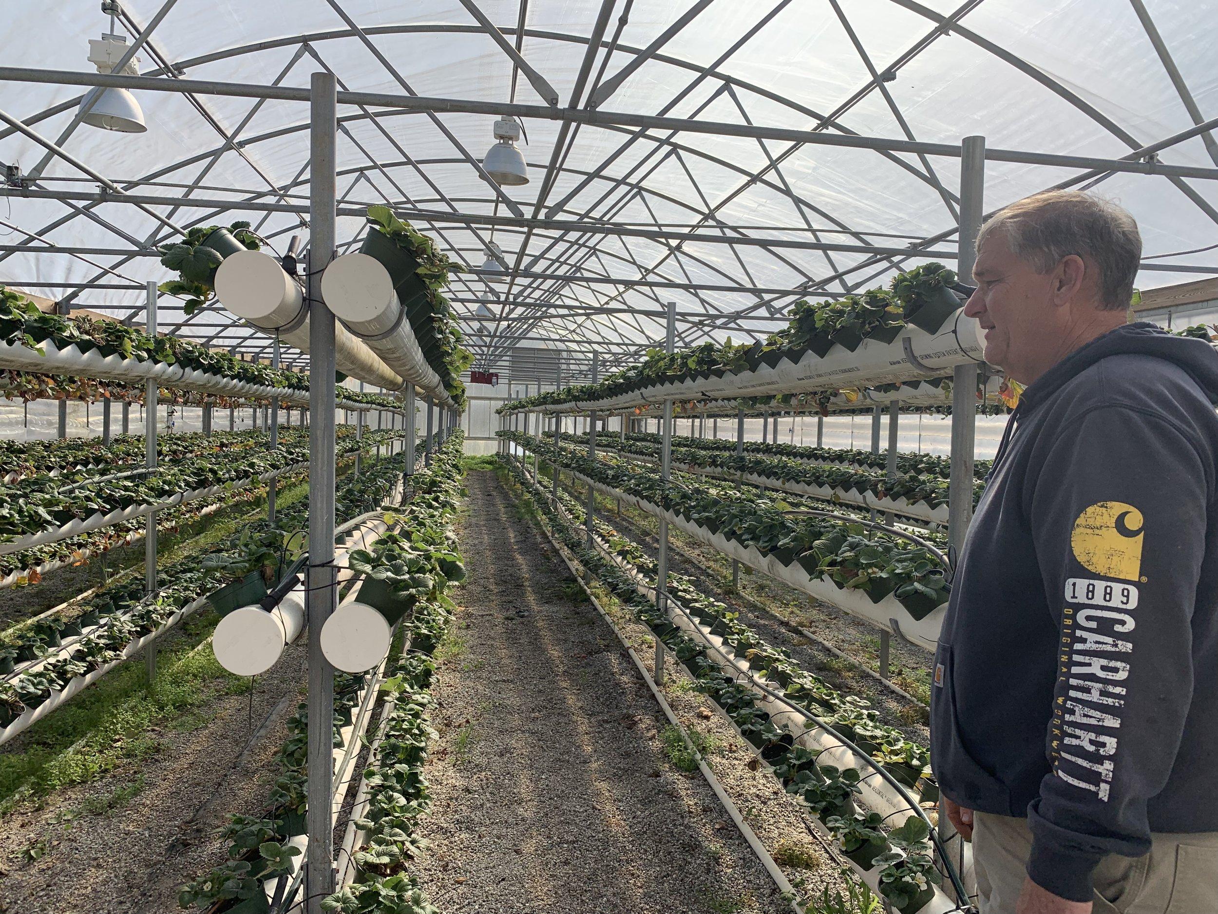 Hurricane Creek Farms in Pelzer, SC — Farm Visit — Jeannie