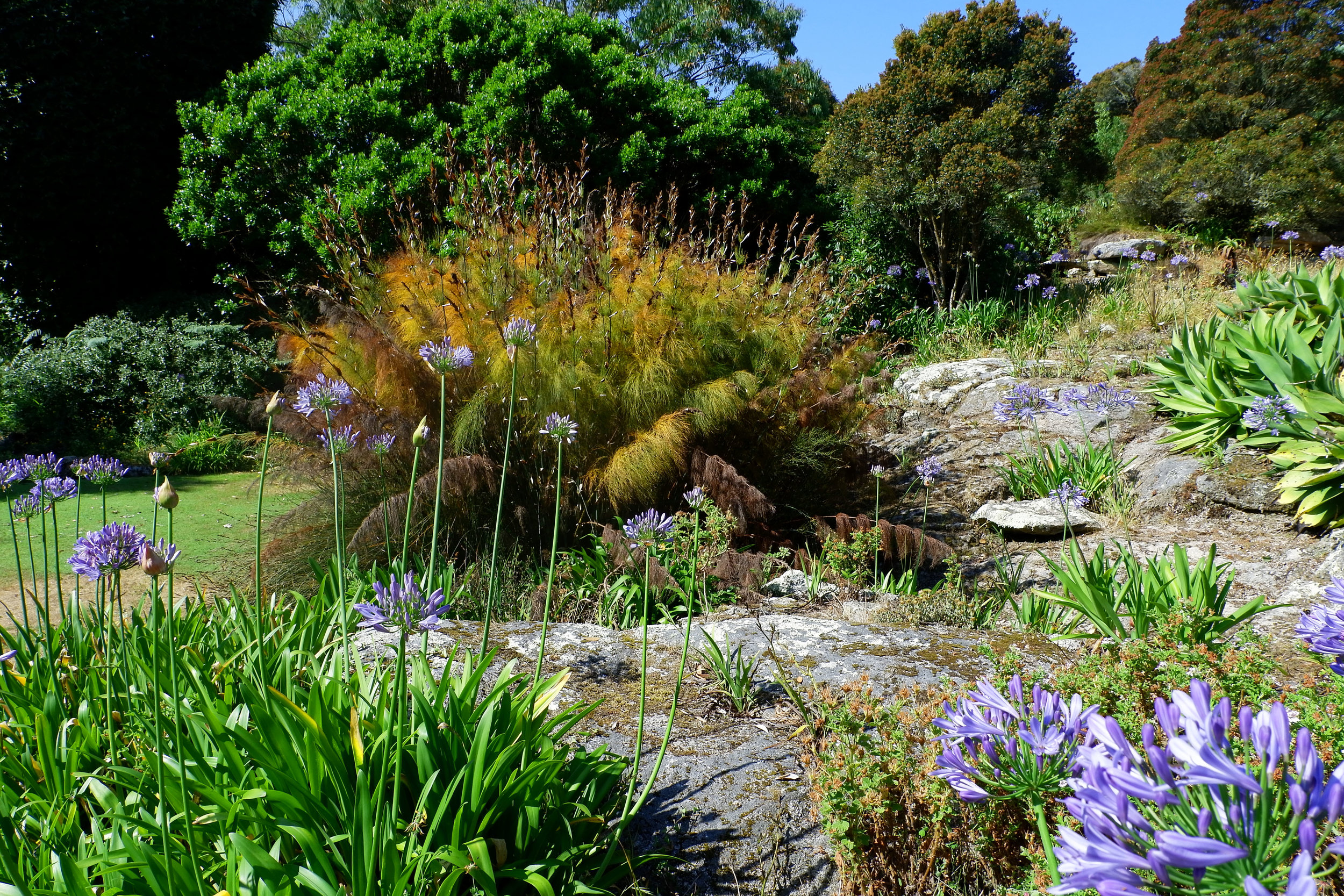 Abbey Garden, Isles of Scilly