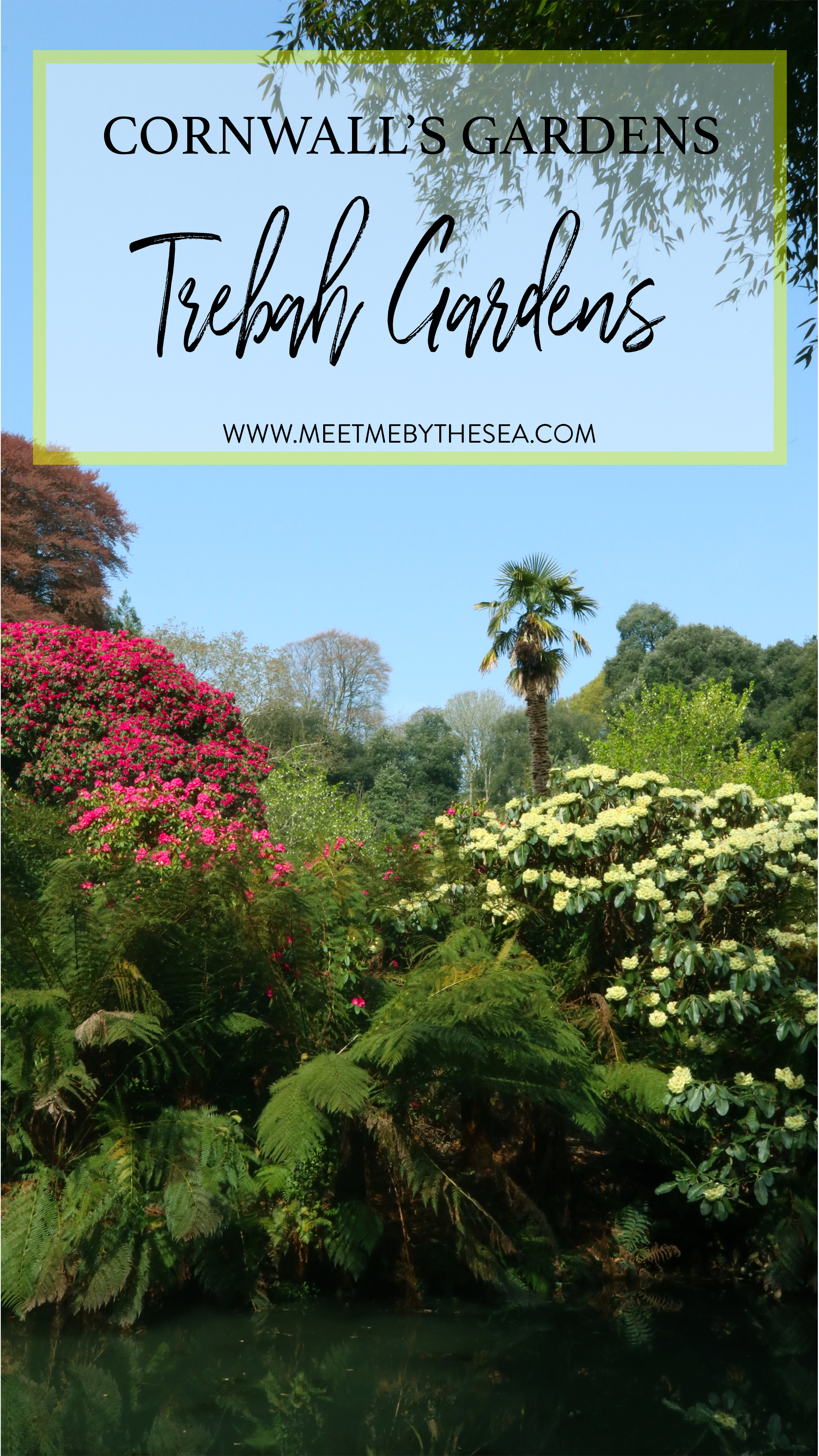 Trebah Gardens.jpg