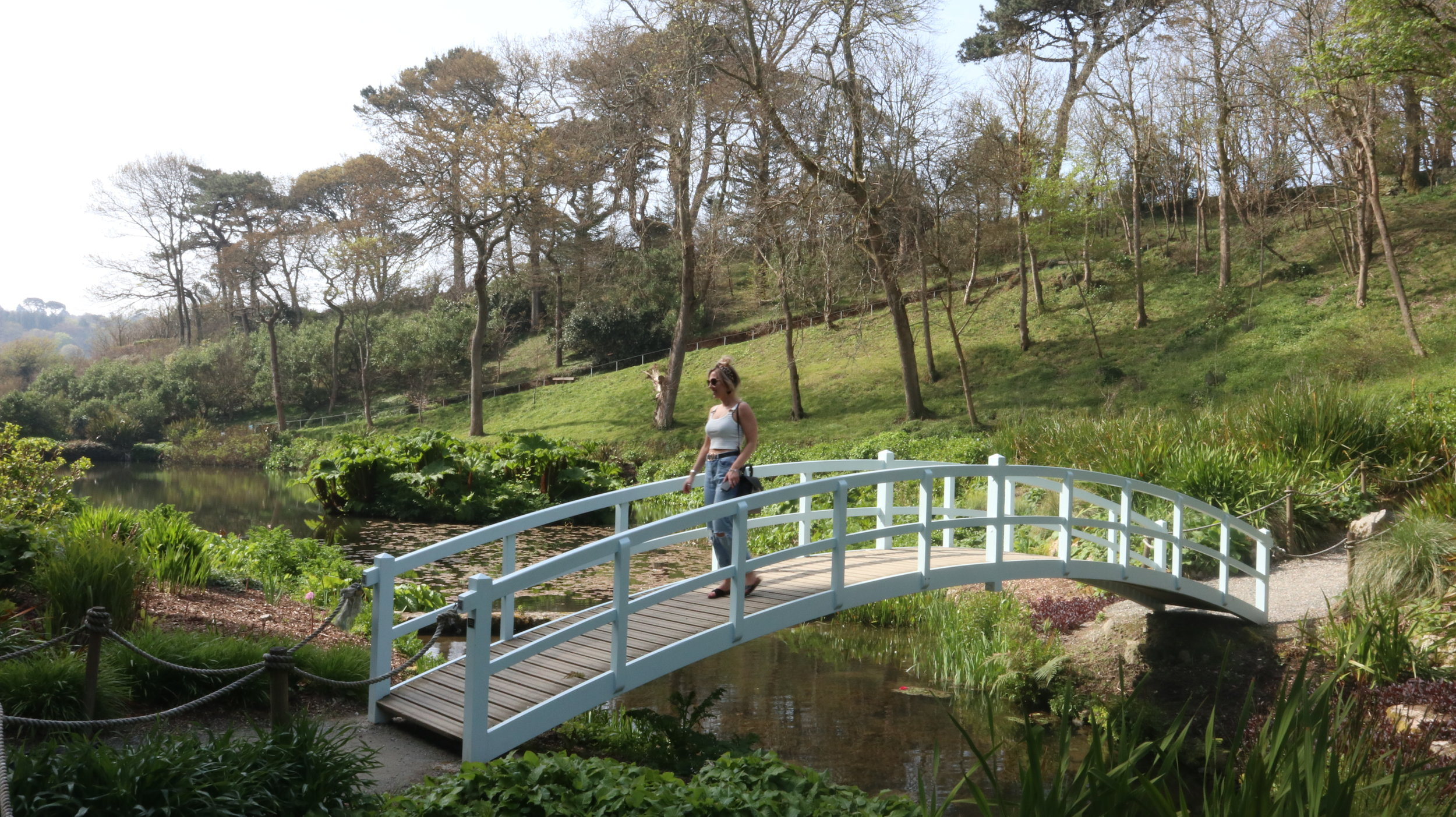 Bridge at Trebah Gardens