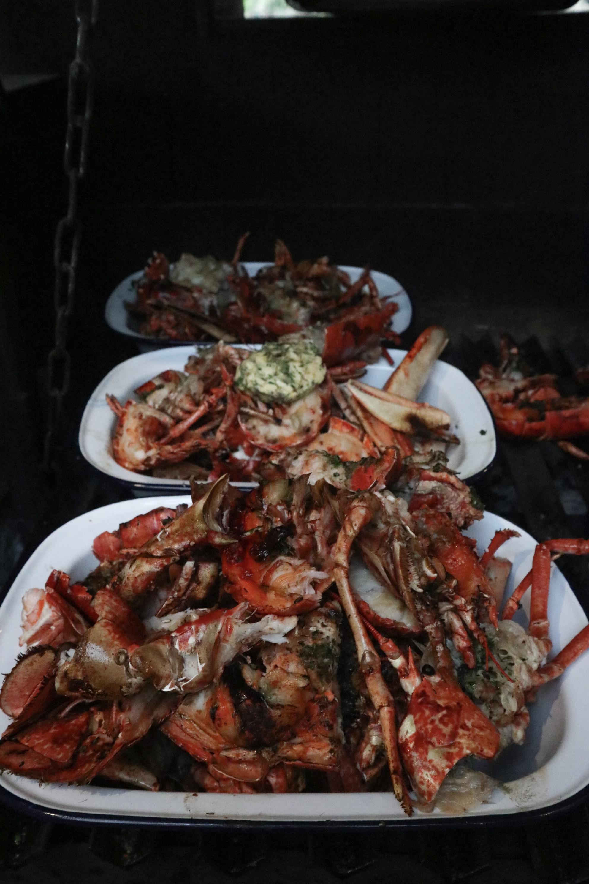 lobster cornwall