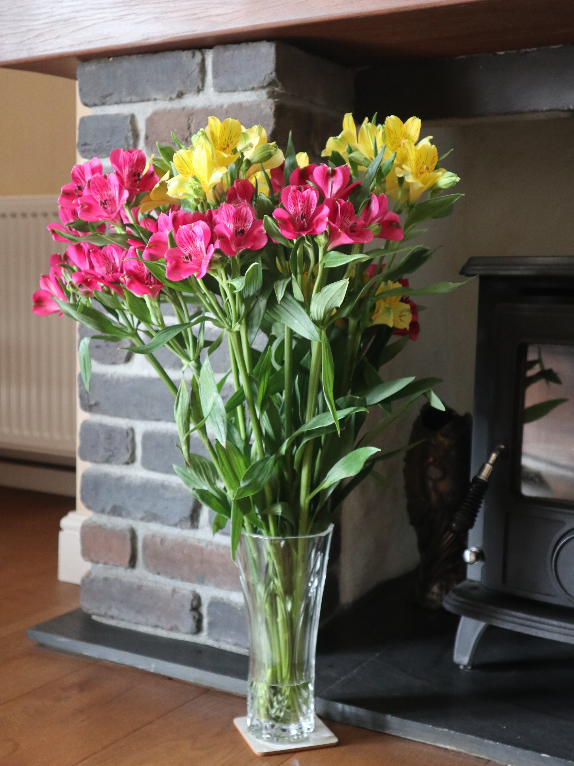 Flowers from Cornwall
