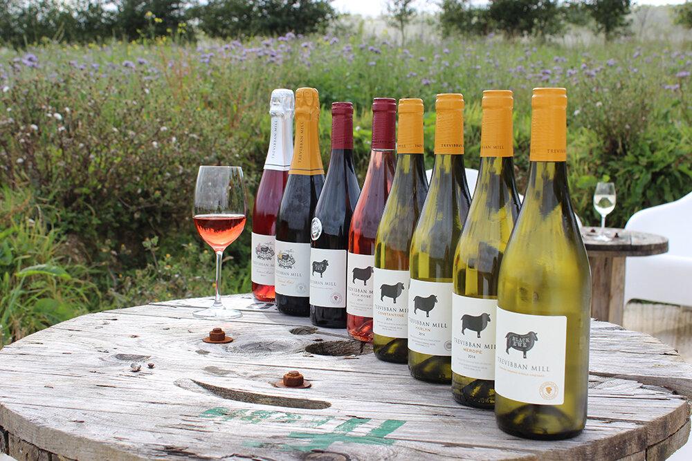 Wine tasting in Cornwall