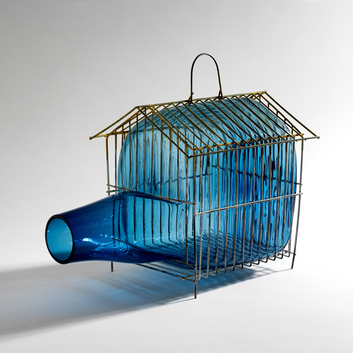 GALA FERNÁNDEZ - BLUE HOUSE CAGE