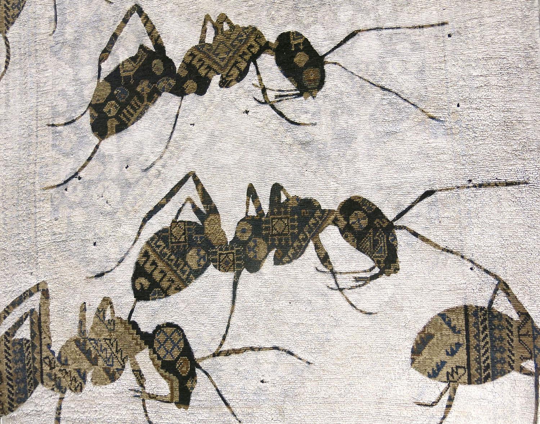 web-Ants-detail_cut-lr.jpg