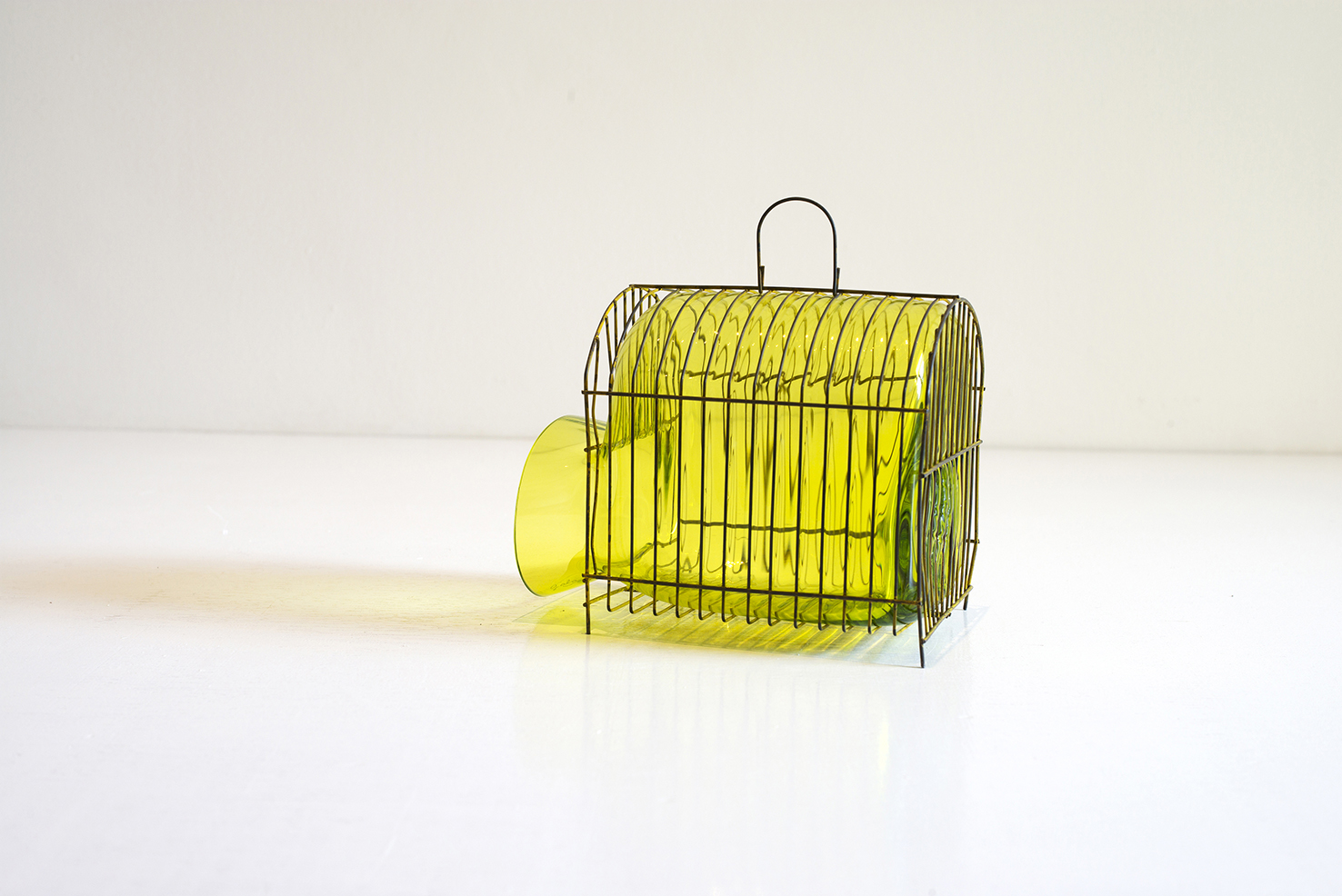 web22-Out_Cage_Yellow_Cage_small_photofelixfriedmann2-Gala-Fernandez-MarionFriedmannGallery.jpg