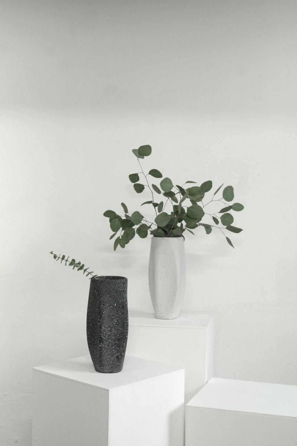 Tecnolitico-black-white-lr.jpg