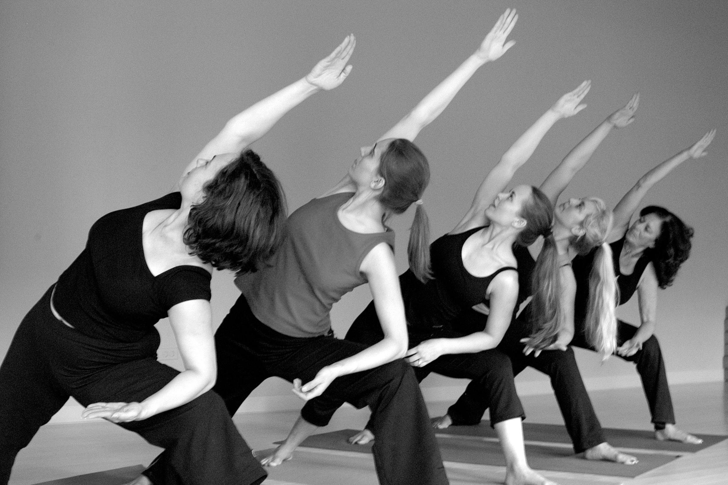 Yoga Teacher Training -