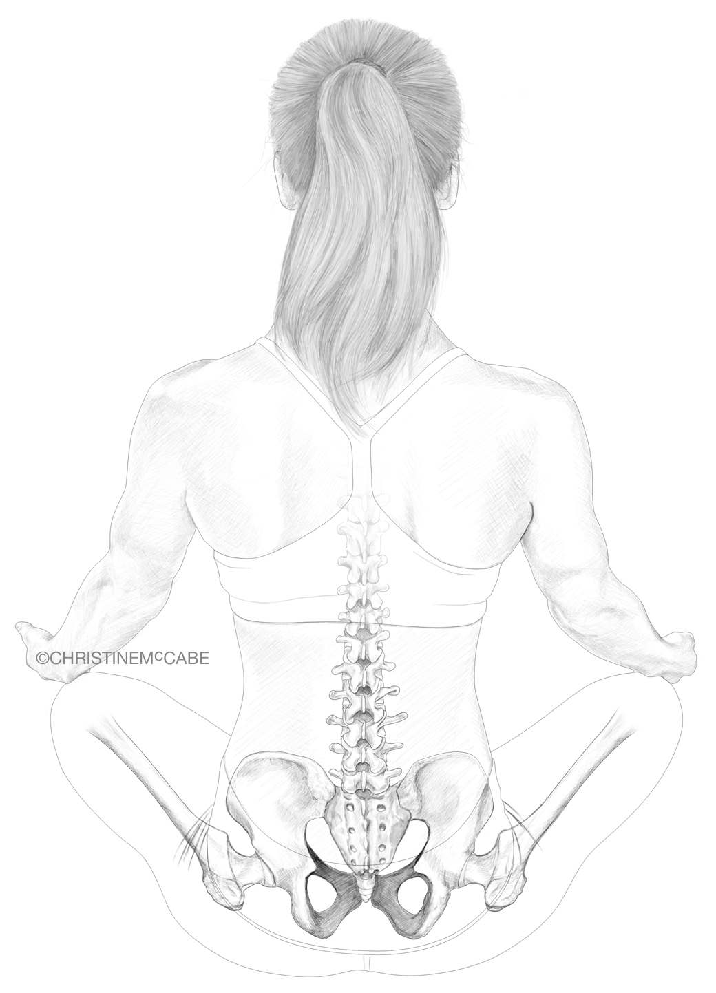 Anatomy of a Yogi - Sitz.jpg