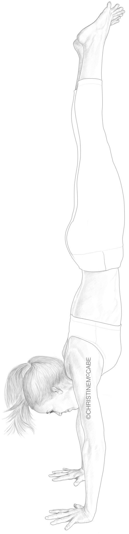 Anatomy of a Yogi - Handstand.jpg