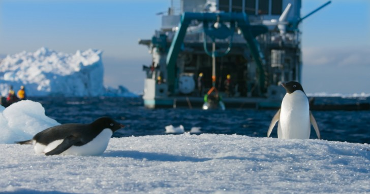 penguins blue planet