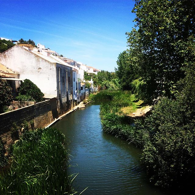 Currently sitting the library writing a paper daydreaming about this cute little Portuguese town I visited a few weeks back. Have I mentioned how much I love Portugal? 😉 • #portugal #algarve #aljezur #streams #greenspace #urbanenvironment #unilife #biodiversityconservation