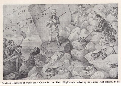"""Sir Edwin Landseer ,1835 lithograph entitled """"Scottish Terriers at Work on a Cairn in the West Highlands"""""""