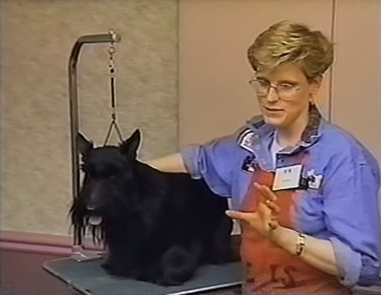 GROOMING THE FRONT ASSEMBLY OF A SCOTTISH TERRIER PT. 1 with Kari Hill, Charthill Scottish Terriers