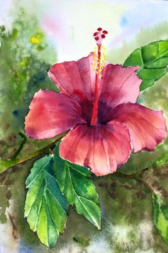 Tenerife Hibiscus