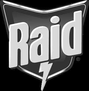 Raid copy.png