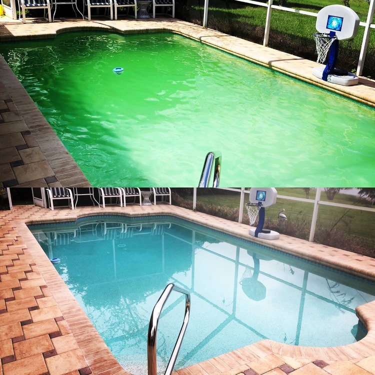 When pool maintenance gets out of control, we can help!