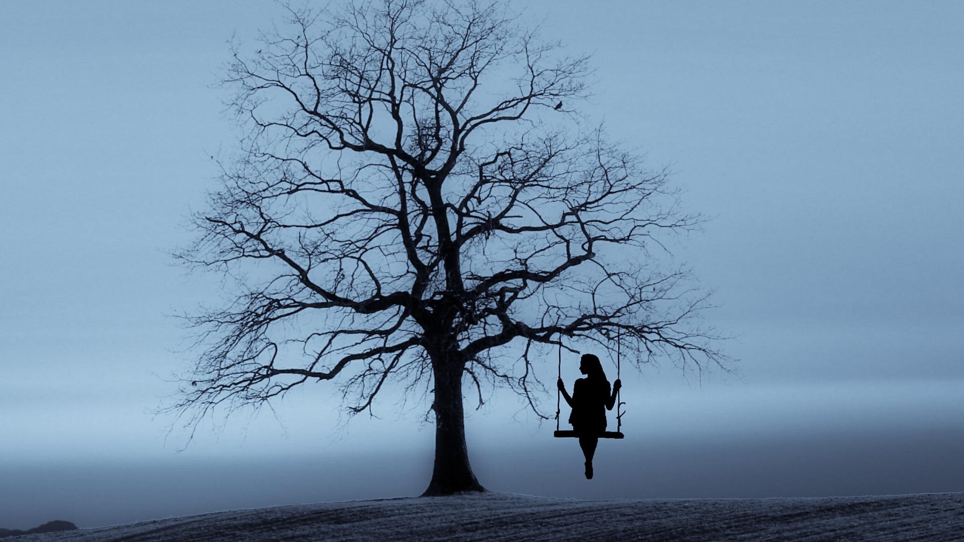 tree-3080406_1920.jpg