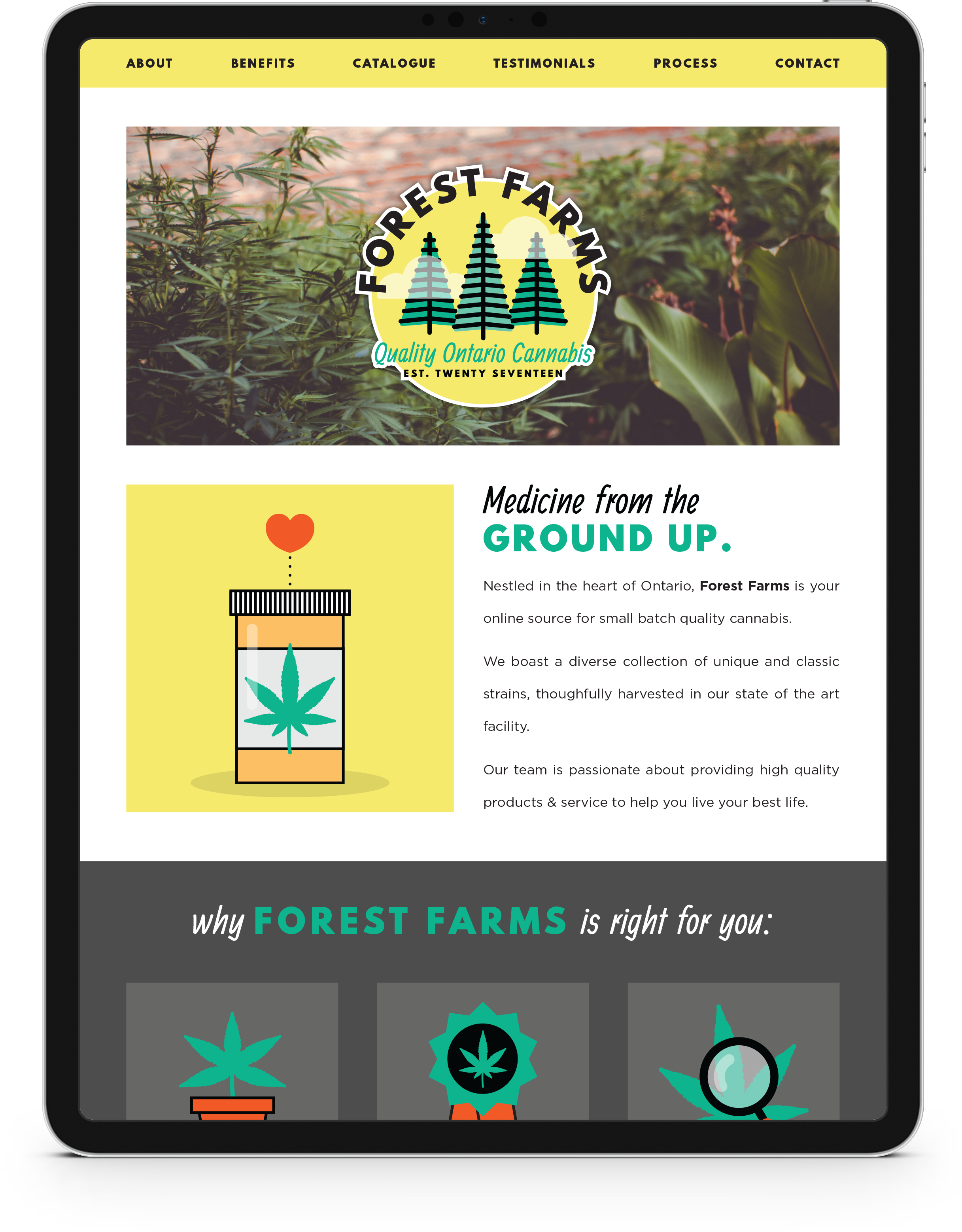 TCR-ForestFarms-Web-I.png