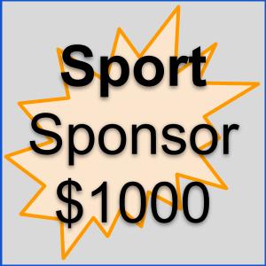 Sponsorship Overview _ Sport.png