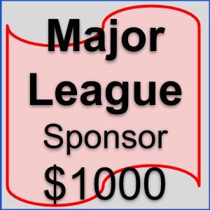 Sponsorship Overview _ Major League.png