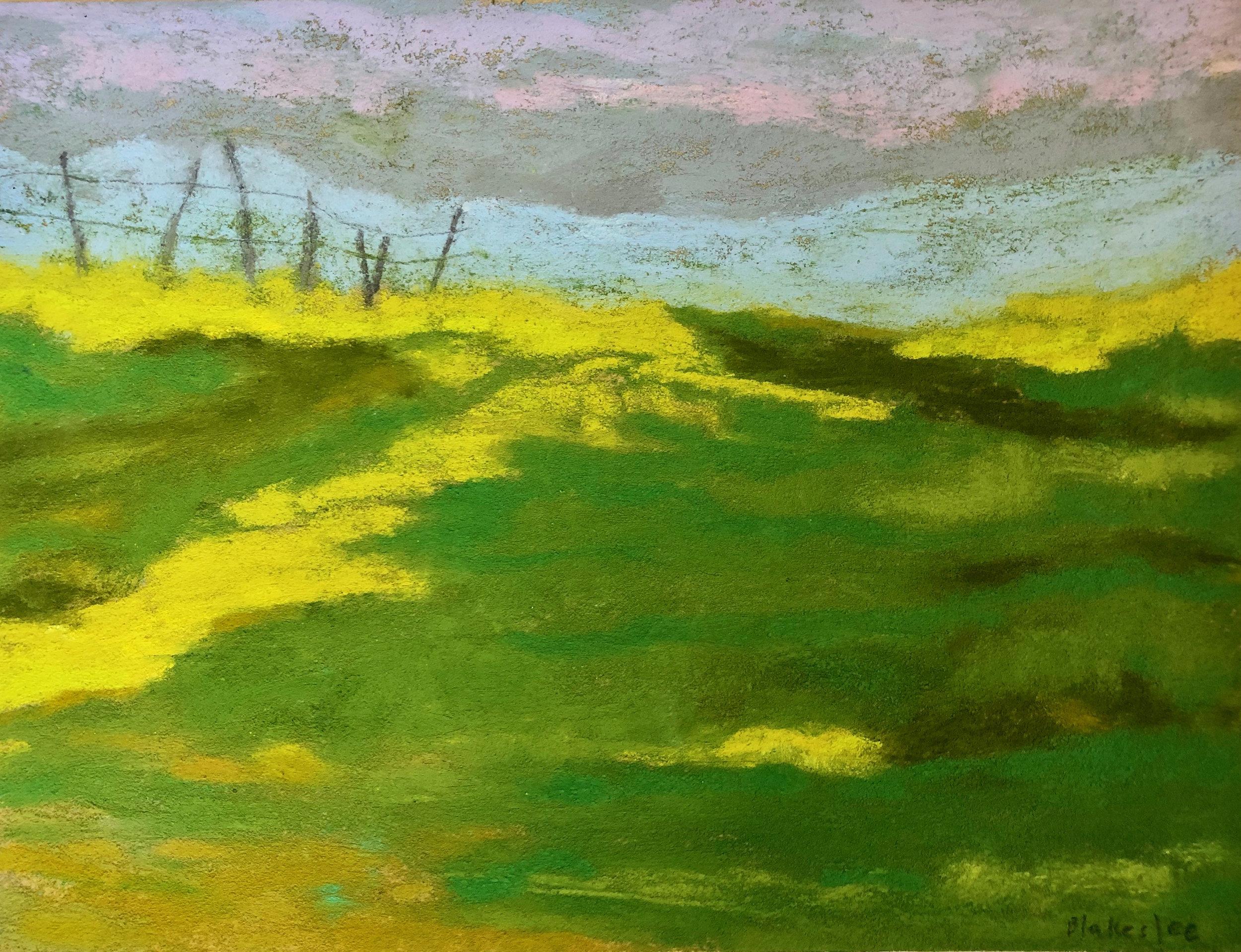 Chileno Valley Landscape